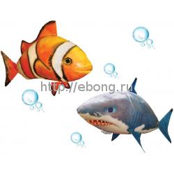 Летающие рыбы Air Swimmers